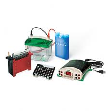 美国Bio-Rad伯乐小型转印及电源系统#1703989