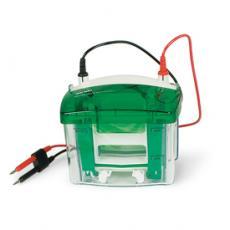 美国Bio-Rad伯乐Mini-PROTEAN小型垂直电泳槽#1658004